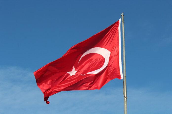 Hemşireliğin Türkiye'de Gelişimi